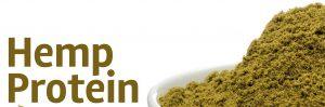 Hemp Protein Powder Benefits and Risks